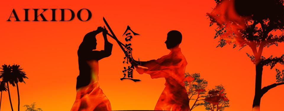 Aikido1_r1_c1